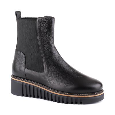 Ботинки Loriblu O0406