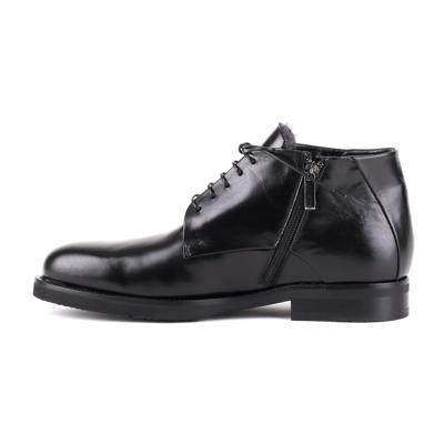 Ботинки Baldinini T0246