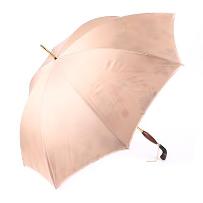 Зонт Pasotti U0569