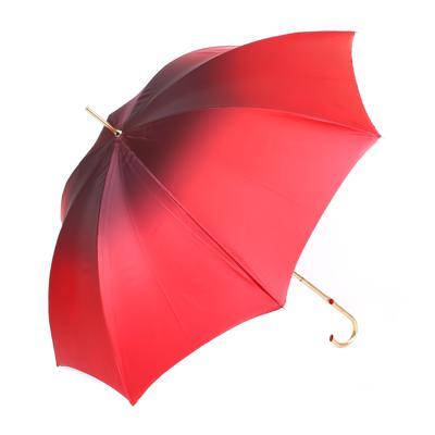 Зонт Pasotti Z0885